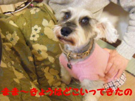 2010_02210032