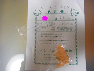 2010_03270002