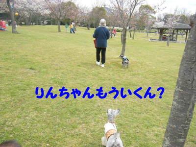 2010_03310012