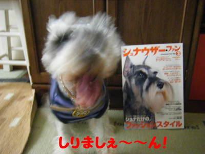 2010_04190018