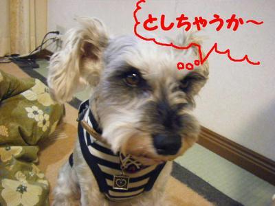 2010_04240010_2