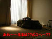 2010_05010018
