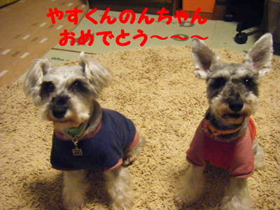 2010_05030022