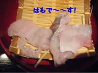 2010_05200005