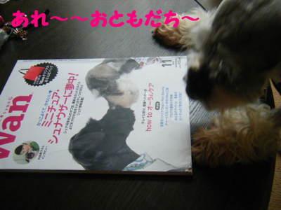 2010_05220001