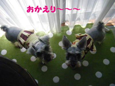 2010_05300064_2