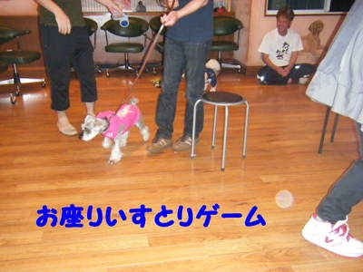 2010_06050079