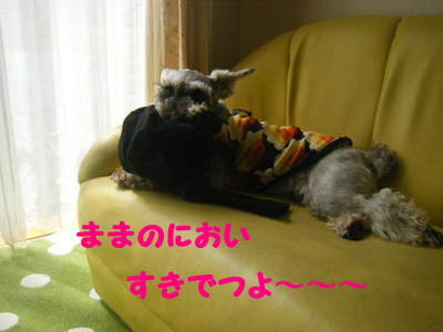 2010_06090001