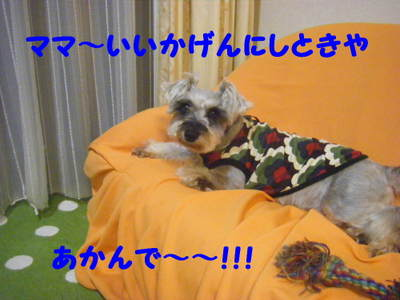 2010_06140017