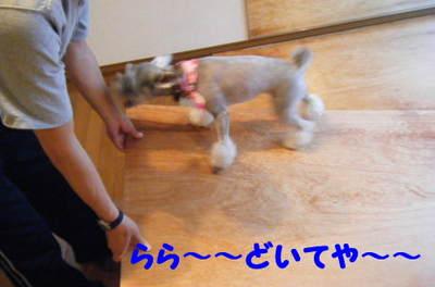 2010_06180018