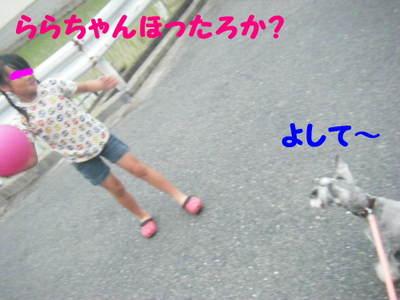 2010_07020041