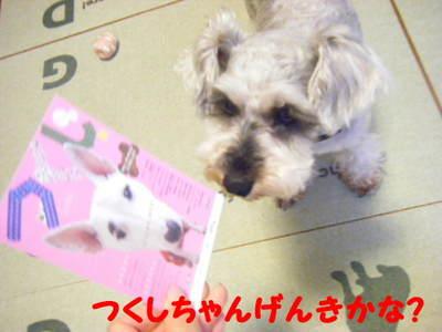 2010_07230017