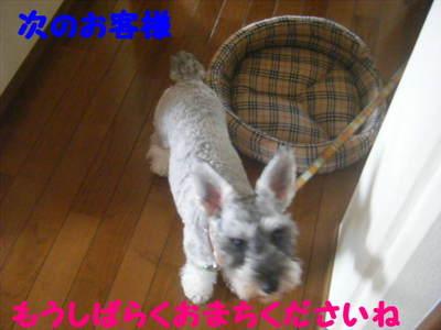 2010_09140007