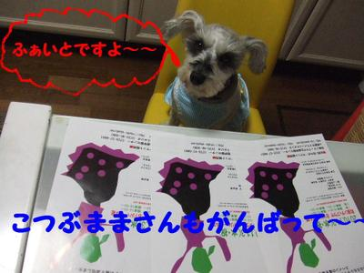 2010_10190007