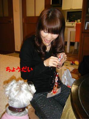 2010_11300002