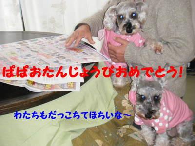 2011_01010004