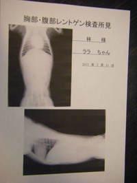 2011_02120081_2