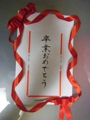 2011_03020003