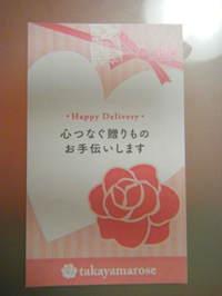 2011_03310011