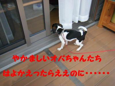 2011_04280023