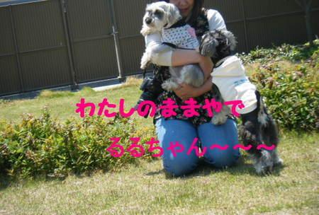 2011_04290100