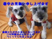 2011_07300011