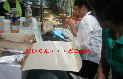 2011_07310017