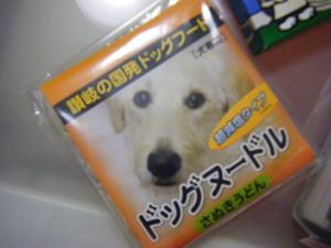 2011_08110050