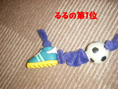 2011_08170001