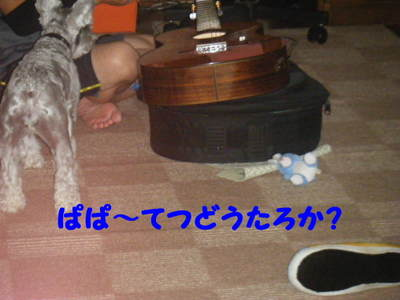 2011_08180002