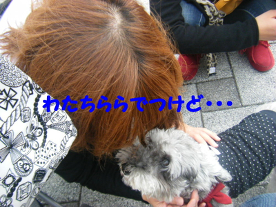 2011_10020050