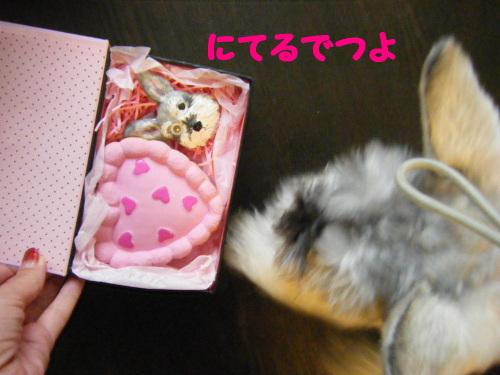 2011_11110017