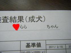2011_12010008