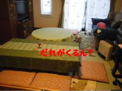 2012_01140011