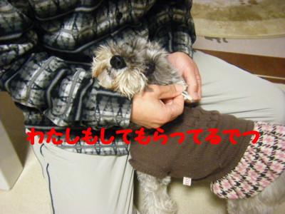 2012_02250001_2