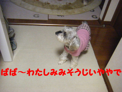 2012_02250005