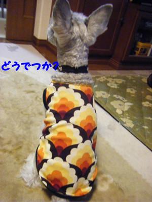 2012_03230007_2
