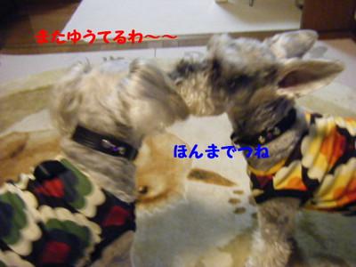 2012_03230008