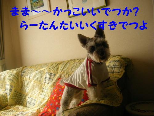 2012_04290011