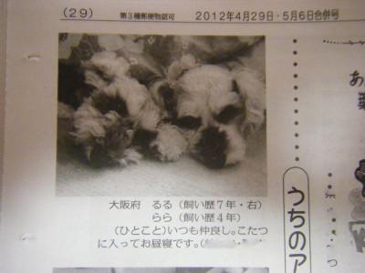 2012_04290014