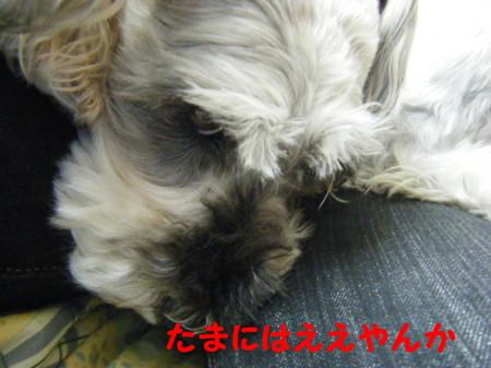 2012_05190036_3