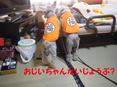 2012_06020009