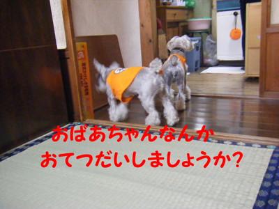 2012_06020020