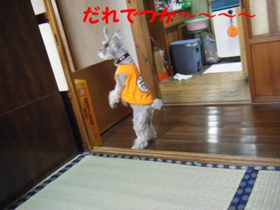 2012_06020034_2