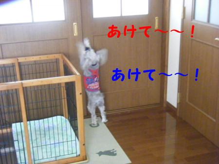 2012_07220014