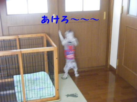 2012_07220015