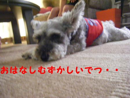 2012_07250018