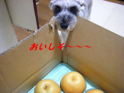 2012_09110025