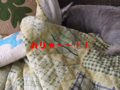 2012_09230015