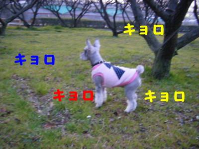 2013_02270025_3